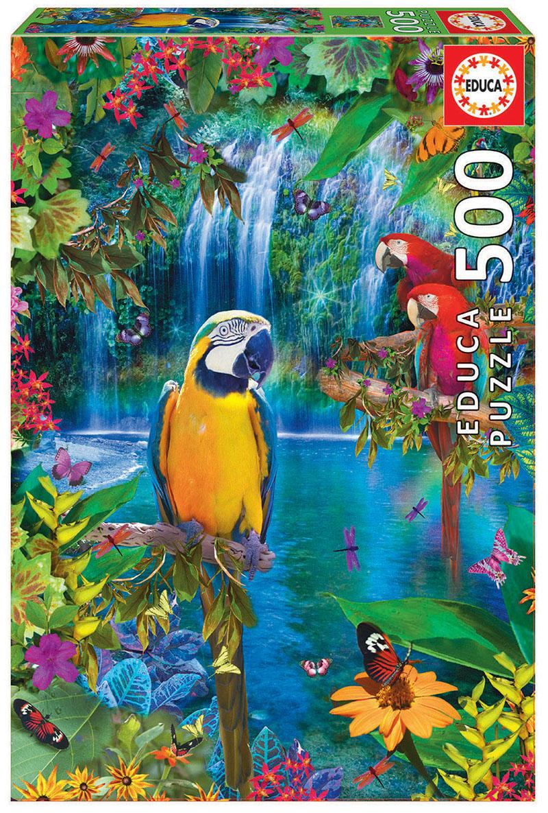 500 Bird tropical land