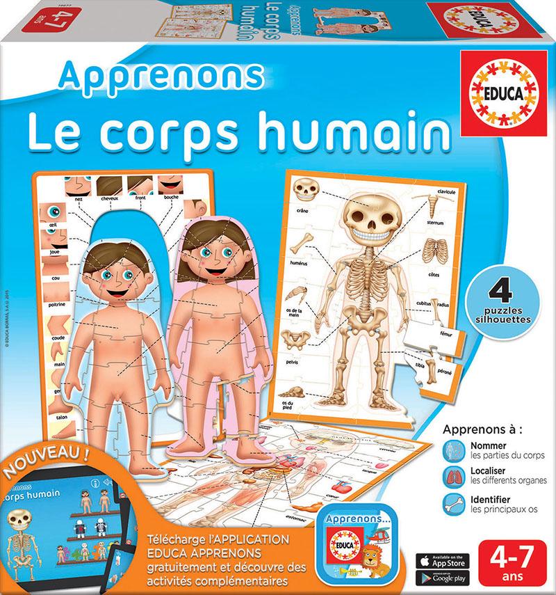 Apprenons – le corps humain