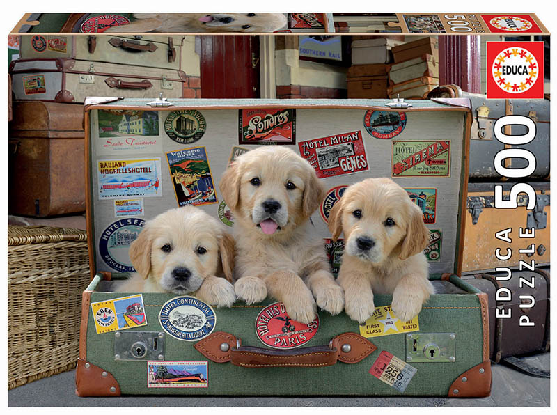 500 Puppies in the luggage