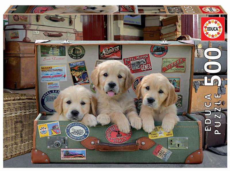 500 Cachorros en el equipaje