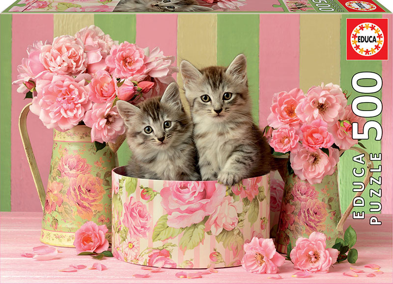 500 Kittens with roses