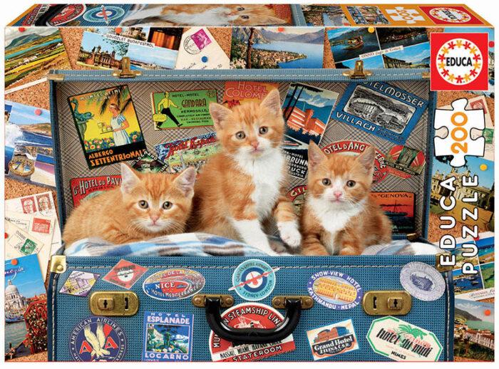 200 Gatitos viajeros