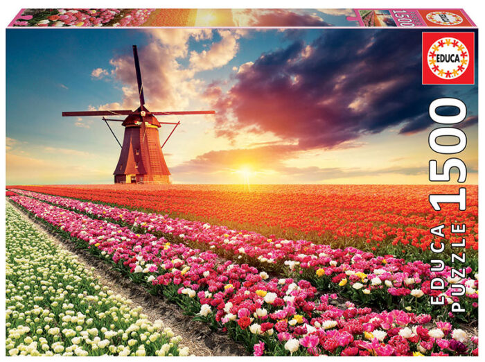 1500 Paisaje de tulipanes