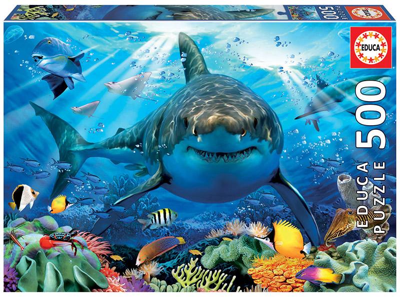 500 Great White Shark