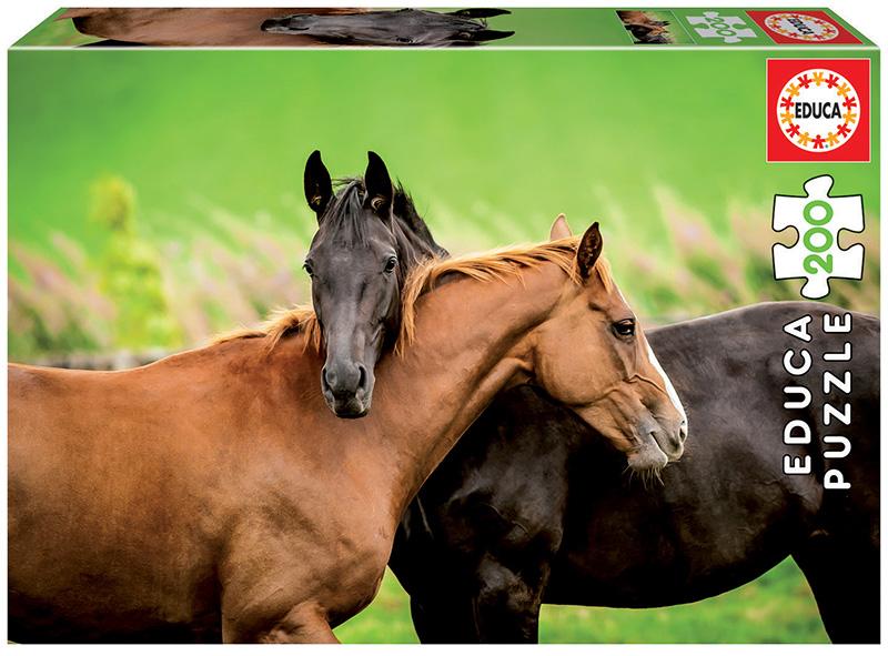 200 Horses