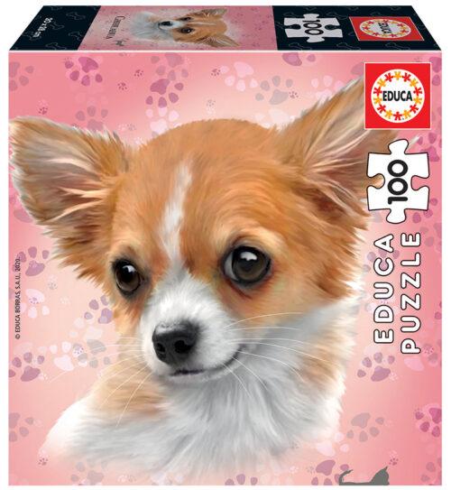 100 Chihuahua