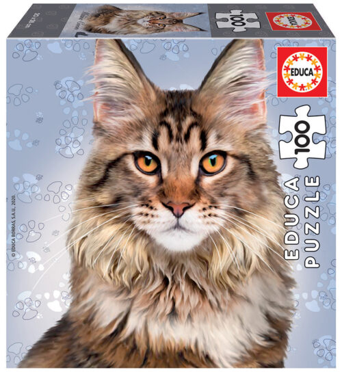 100 Maine Coon