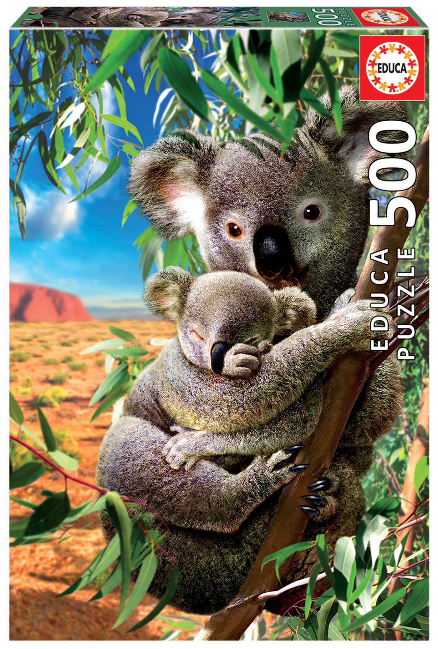 500 Mamá y bébé Koala
