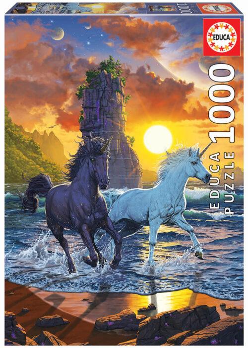 1000 Des Licornes sur la plage, Vincent Hie