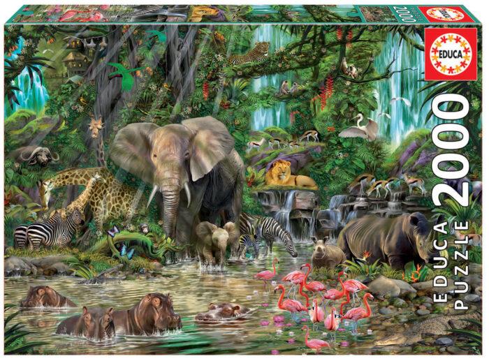 2000 African jungle