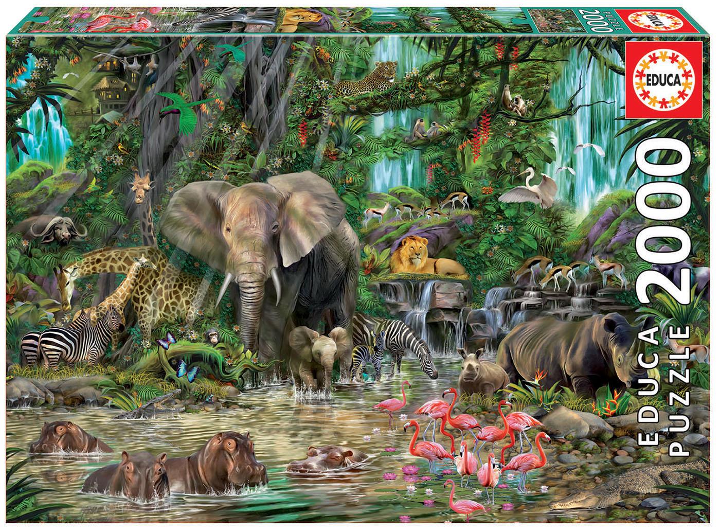 2000 Jungle africaine