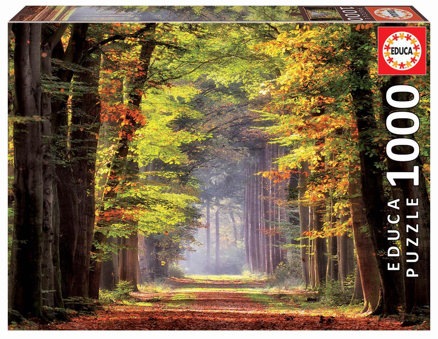 1000 Fall Walkway