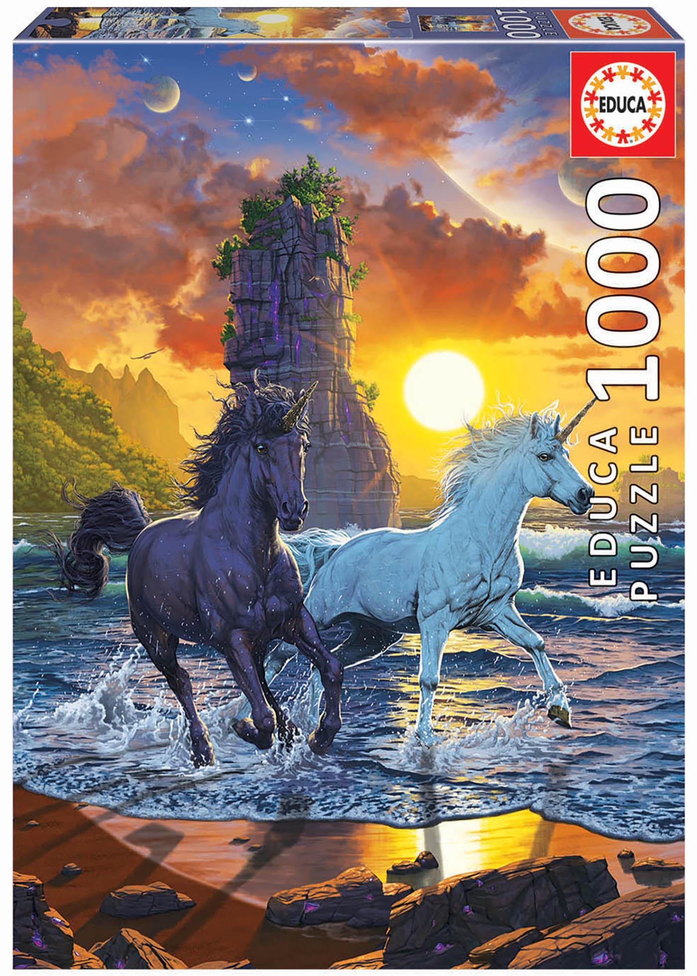1000 Unicorns on the beach, Vincent Hie
