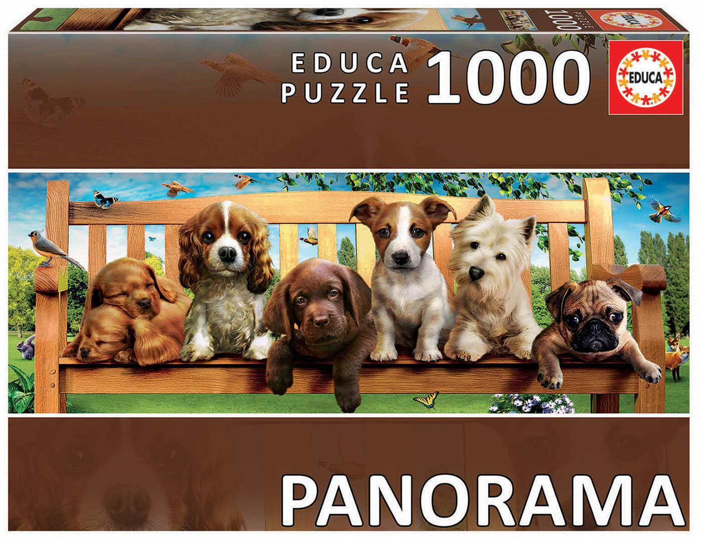 "1000 Cachorros no Banco ""Panorama"""